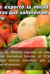Almeria vegetables