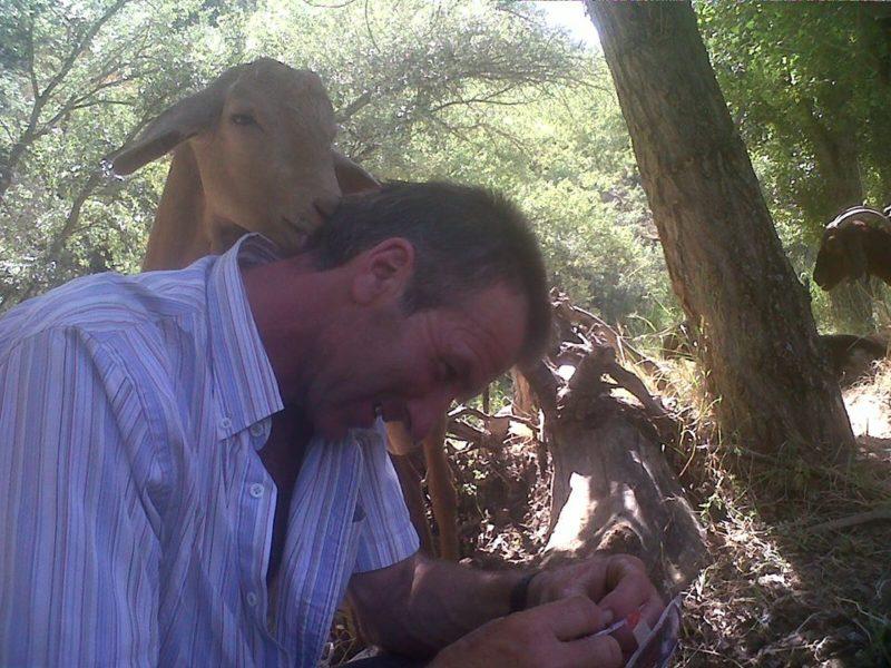 Photo#1-Antonio&Goat