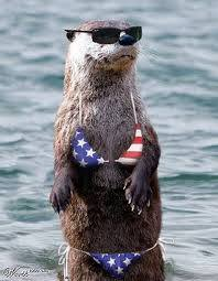 Photo#10-OtterSwimSuit