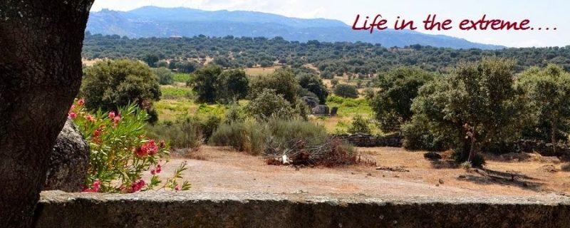 Photo#27-LifeInExtreme