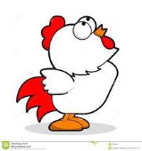 Photo#1-Chicken