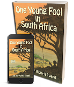 3D One Young Fool in South Africa w ereader copy