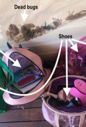 bushfire bags copy
